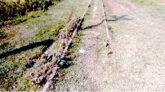 শায়েস্তাগঞ্জ হতে বাল্লা পর্যন্ত পরিত্যক্ত রেলপথে চলছে লুটপাট