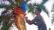 হারিয়ে যেতে বসেছে ঐতিহ্যবাহী খেজুরের রস নাগরপুরে !