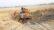 কমলগঞ্জে উর্বর মাটি যাচ্ছে ইটভাটা ও ভরাটের কাজে : হুমকির মুখে কৃষি জমি!