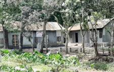 সরকারি প্রণোদনার দাবী মতলব উত্তরে চরম সংকটে কিন্ডার গার্টেনের শিক্ষকরা