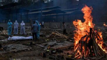 বিশ্বে করোনায় মৃত্যু সরকারি হিসাবের দ্বিগুণেরও বেশি: আইএইচএমই