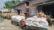 গাংনীতে দীর্ঘ ৬ মাস পরে খাদ্য গুদামে ধান ক্রয় শুরু। চাষীদের কার্ডে ধান দিচ্ছে ব্যবসায়ীরা
