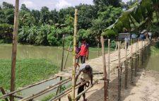 গ্রামবাসীর উদ্যোগে চাটমোহরে বড়াল নদীতে নির্মিত হচ্ছে বাঁশের সেতু