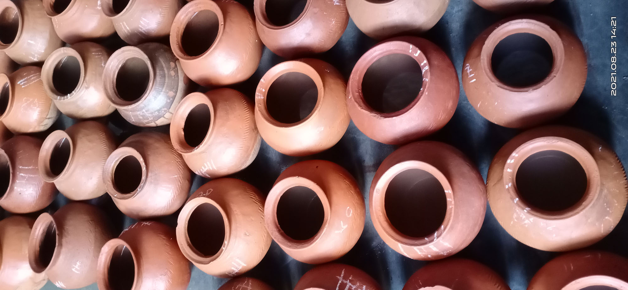 কুয়াকাটায় চিংড়ি রেণু আটক নিয়ে নাটকীয়তার অভিযোগ